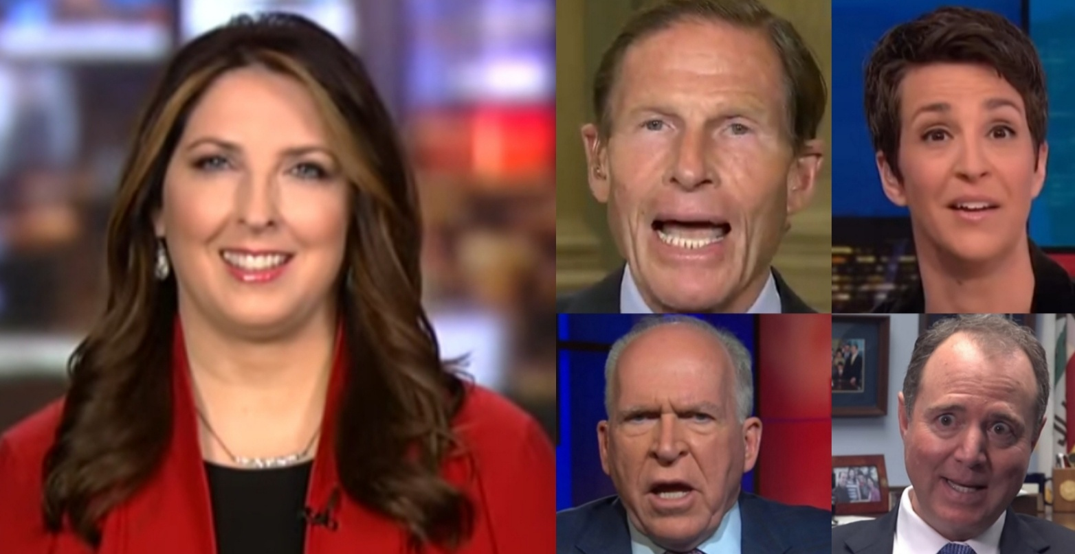 Ronna McDaneil Exposes The Left's Sudden Shift In Their Transparency Stance: 'Funny How That Works, Isn't It?'